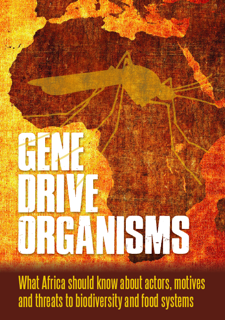 Gene drive organisms: What Africa should know about actors, motives and threats to biodiversity and food systems