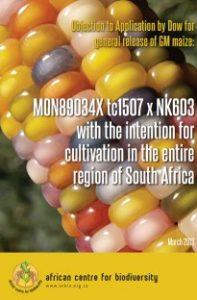 Report cover with a coloured maize and overlayed text.
