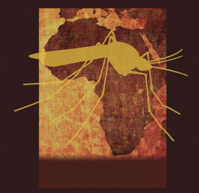 Gene Drive Organisms in Africa: Civil Society Speaks Out