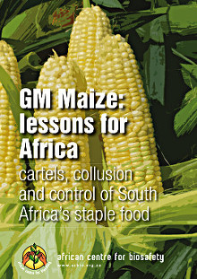 GM-Maize-Report-cover