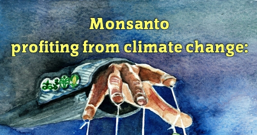 Monsanto-drought-strap