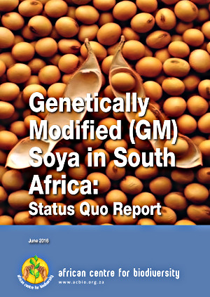 GM-Soya-Update